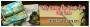700 x 200  pixel - Bài đăng đầu - JPG